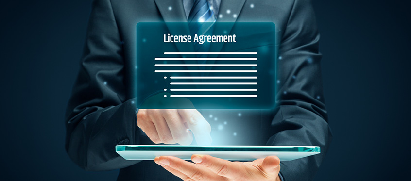 Software License – How to prevent Future Hassles