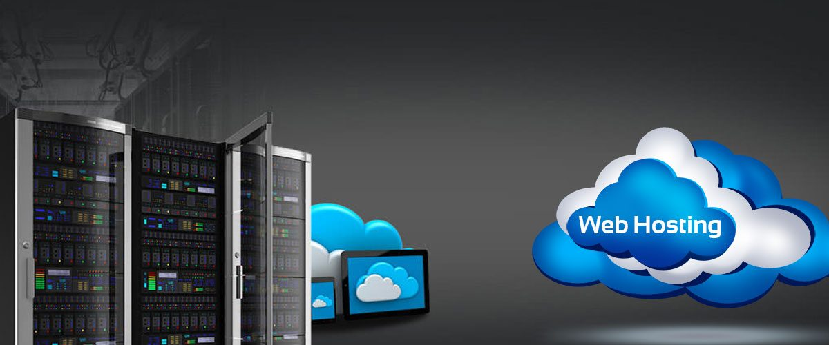 Which Kinds of Website Hosting Would You Like?
